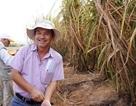 Bầu Đức được xuất 50.000 tấn đường từ Lào về Việt Nam
