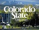Học bổng 50% Đại học Colorado State