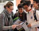 Sôi động ngày hội Giáo dục Vương quốc Anh 2013