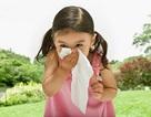 Viêm mũi ở trẻ: Không thể xem thường!
