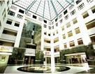 Cơ hội học bổng 100% học phí từ Học viện quản lý Singapore - SIM