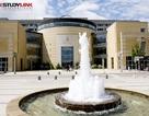Đại học York – ĐH kỹ thuật hàng đầu tại Canada