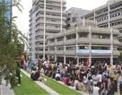 Học bổng 50% học phí tại Học viện công nghệ NTEC, New Zealand