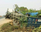 Xe container chở 70 tấn gạo lật nghiêng xuống ruộng