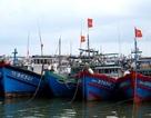 Đà Nẵng kêu gọi tàu thuyền tránh bão Bopha