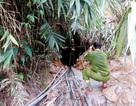 Một phu vàng tử nạn trong hầm lò mỏ vàng Bồng Miêu