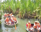 Khám phá rừng dừa bảy mẫu độc đáo ở Hội An