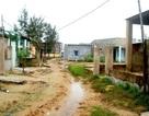 Kiến nghị triển khai quy hoạch chung ĐH Đà Nẵng trên địa bàn tỉnh Quảng Nam