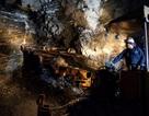 Đóng cửa mỏ vàng lớn nhất Việt Nam