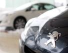 Peugeot – Làm gì ở Việt Nam thời điểm này?