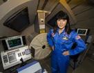 Học bổng đào tạo mô phỏng phi hành gia dành cho giáo viên THPT