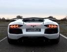 Lướt gió với Lamborghini Aventador phiên bản Rồng
