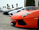 Siêu xe Lamborghini hội ngộ