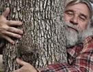 Người dân Úc rủ nhau viết thư tình gửi cho... cây