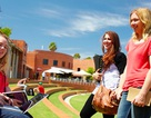 Học bổng thạc sỹ kế toán tại đại học Curtin, Úc