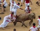 """Thót tim với những hình ảnh """"bò rượt người"""" trong lễ hội San Fermin"""