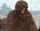 Phá kỷ lục thế giới khi để hơn 1 triệu con ong chích khắp người