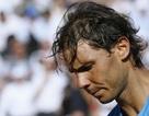 """Bảng xếp hạng ATP: """"Vua đất nện"""" Nadal rơi tự do"""