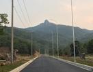 Dự án trồng rừng, sinh thái của Hoa Sen: Cần chính quyền và người dân hỗ trợ