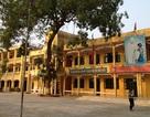 Hàng trăm tiểu thương Ninh Hiệp bãi thị, đối thoại với Chủ tịch huyện