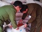 Bắt gần 20 tấn mì chính, ô mai xuyên đêm từ Trung Quốc về Hà Nội