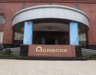 Truy tố 11 bị cáo trong vụ chi nhánh Agribank cho vay sai, thiệt hại hàng trăm tỉ đồng
