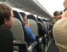 Mỹ: Bị đuổi khỏi máy bay vì vác lợn lên khoang