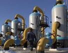 Tê cóng vì thiếu khí đốt, Ukraine trả cho Nga 378 triệu USD