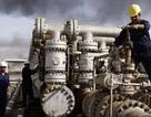 """Khi Mỹ """"đầu hàng"""" trước OPEC trong cuộc chiến giá dầu"""