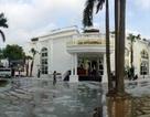 Hà Nội: Bể bơi công viên Đống Đa dùng để... nuôi thủy sản