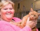 Mèo cưng về nhà sau 7 năm thất lạc