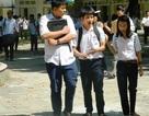 Bình Định: Công bố điểm chuẩn vào lớp 10 công lập