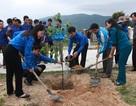 Hơn 1.000  thanh niên nô nức ra quân tình nguyện năm 2014