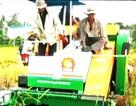 Máy gặt đập lúa giành giải nhất cuộc thi sáng chế năm 2013