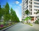 Green Valley - Những giá trị chiều sâu từ một dự án được thị trường mong đợi