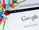 """Google+ """"nhảy vọt"""" sau khi mở cửa rộng rãi"""