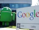 """""""Bom tấn"""" Nexus 4, Nexus 10 hoãn ngày ra mắt vì bão lớn"""