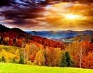 """Đẹp tuyệt vời bộ sưu tập hình nền """"mùa thu"""""""