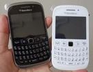 BlackBerry Curve 9320 tầm trung có giá gần 5,3 triệu đồng tại Việt Nam