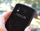 Camera trên Nexus 4 cũng dính lỗi ảnh chụp bị ám tím