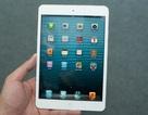 iPad mini chưa tạo cơn sốt tại Việt Nam