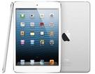 """Bất chấp bão lớn, iPad mini vẫn """"lên kệ"""" đúng lịch"""