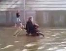 Cảm động clip chó đẩy xe lăn của chủ ra khỏi dòng nước lụt