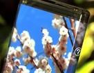 Ra mắt màn hình cảm ứng uốn cong dành cho smartphone