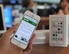 """iPhone 5S giảm giá mạnh tại Việt Nam sau thời gian """"làm mưa làm gió"""""""