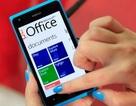 Microsoft cân nhắc cung cấp miễn phí Windows Phone và Windows RT