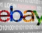 145 triệu người dùng eBay bị hacker đánh cắp dữ liệu cá nhân