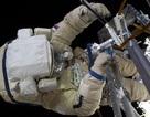Phát hiện sinh vật sống bên ngoài trạm vũ trụ quốc tế ISS
