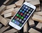Apple tạm ngưng phát hành bản nâng cấp iOS 8.1 vì hàng loạt lỗi