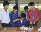 Giáo dục nghề nghiệp Việt Nam lệch với khung trình độ ASEAN